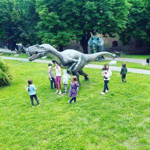 Holi Kids Dino park